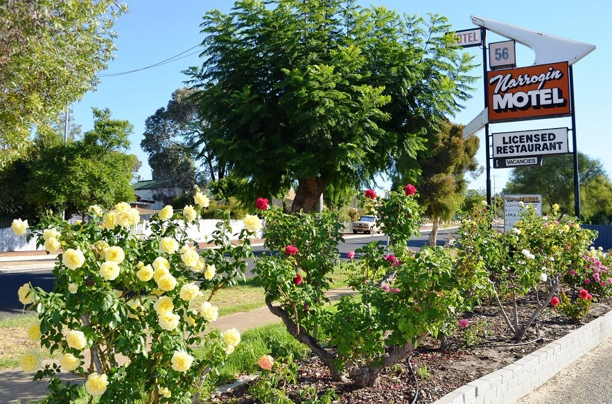 Narrogin Motel - Tourism Brisbane