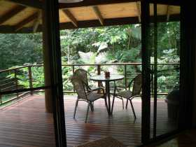 Cape Trib Exotic Fruit Farm Bed and Breakfast - Tourism Brisbane