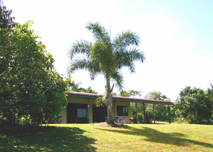 Daintree Mountain View Retreat and Vanilla Beans - Tourism Brisbane
