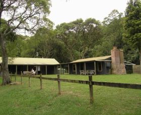 Tree Fern Lodge - Tourism Brisbane