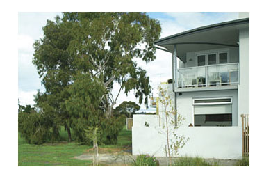 ParkSide Stay - Tourism Brisbane
