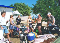 Shark Bay Cottages - Tourism Brisbane