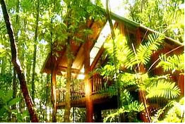 The Canopy Treehouses - Tourism Brisbane