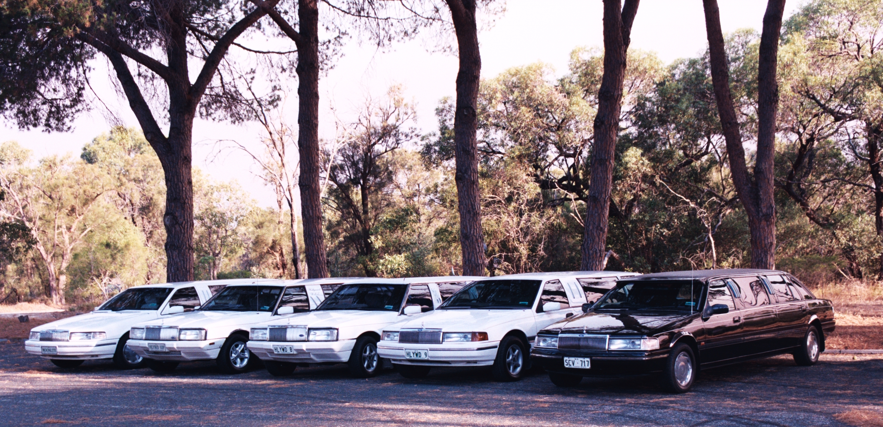 Hollywood VIP Limousines - Tourism Brisbane