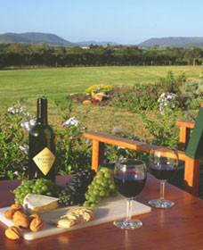 Tranquil Vale Vineyard Cottages - Tourism Brisbane