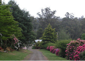 Mountain Rivers Lodge - Tourism Brisbane