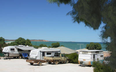 Blue Dolphin Caravan Park  Holiday Village - Tourism Brisbane