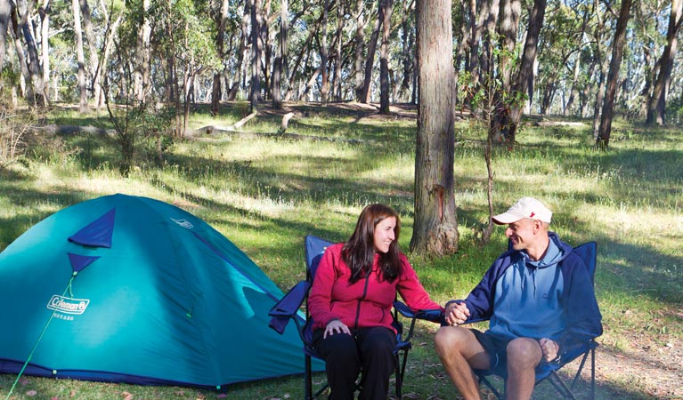 Apsley Falls campground - Tourism Brisbane