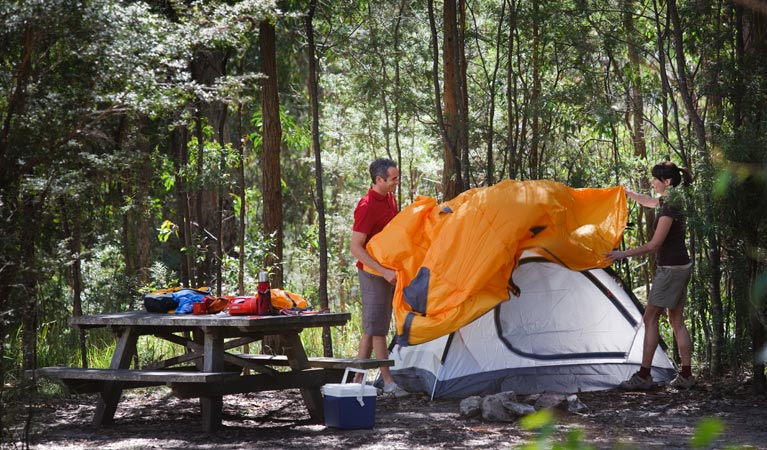 Bald Rock campground and picnic area - Tourism Brisbane
