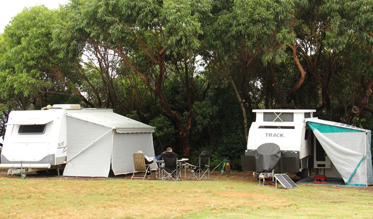 Pretty Beach campground - Murramarang National Park - Tourism Brisbane