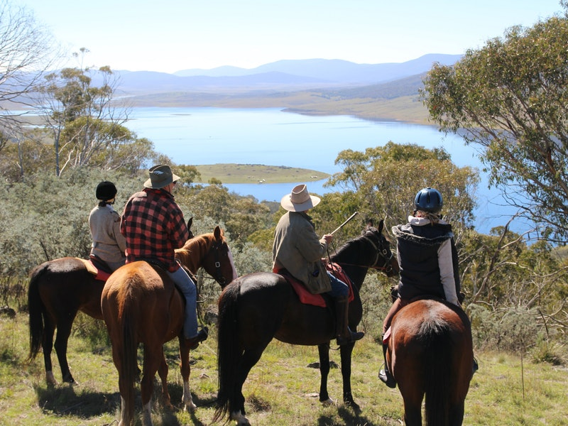 Reynella Homestead and Horseback Rides - Tourism Brisbane