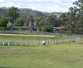 Kellarni Downs Farmstay-Scenic Rim - Tourism Brisbane