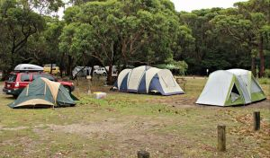 Pretty Beach Campground Murramarang National Park - Tourism Brisbane