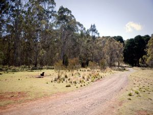 The Pines campground - Tourism Brisbane
