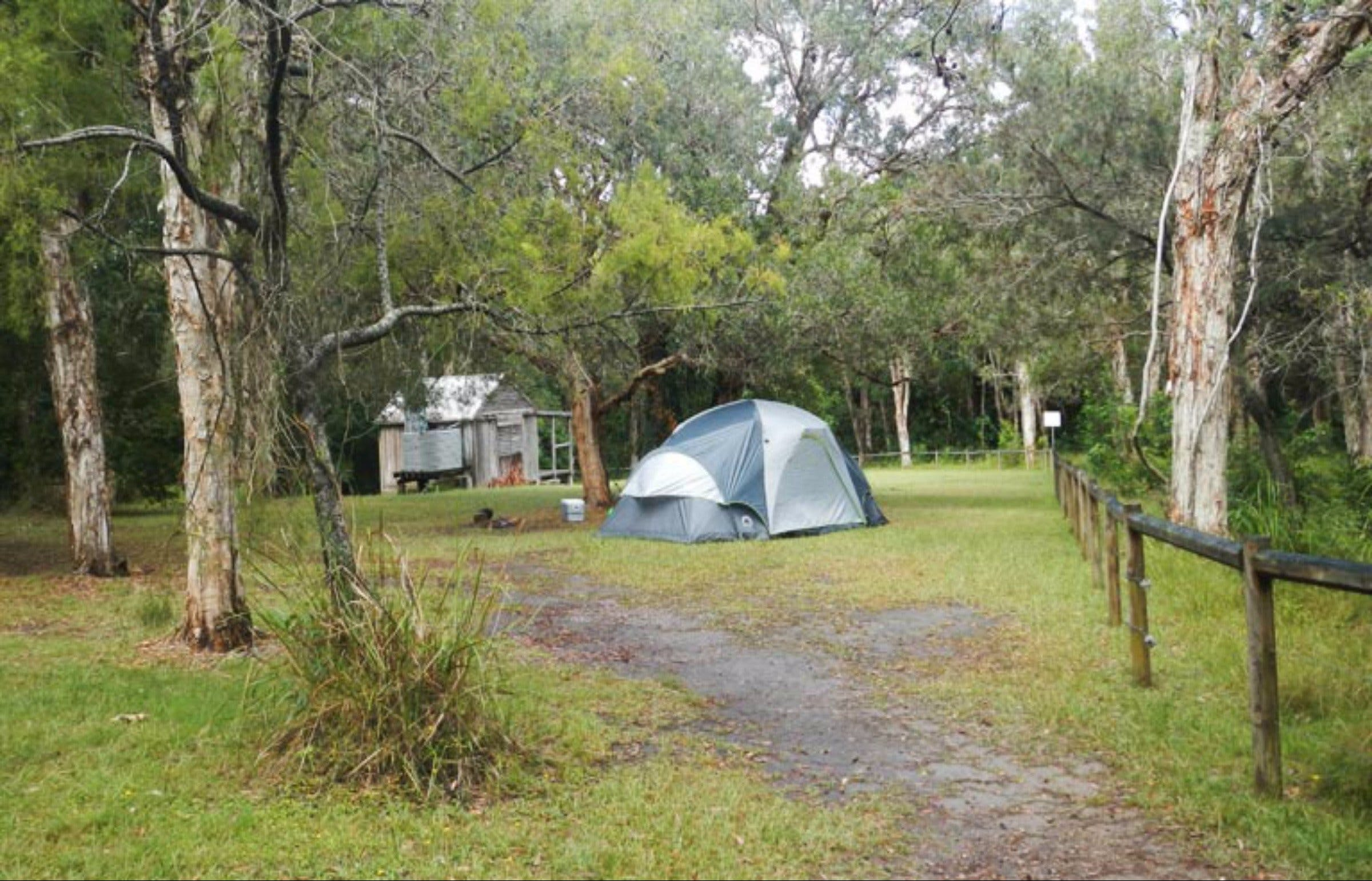 Kylies Hut walk-in campground - Tourism Brisbane