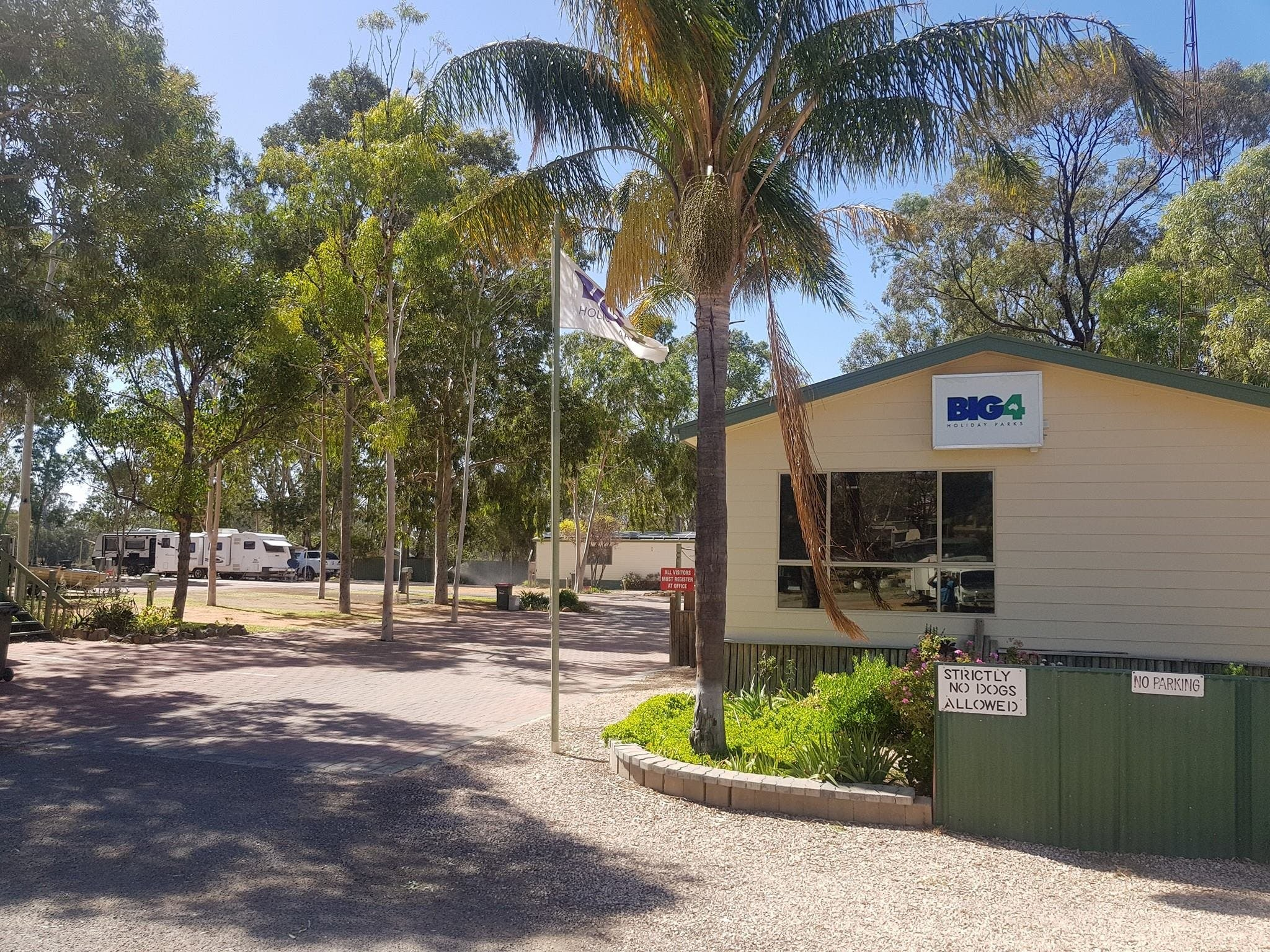 Big4 Blanchetown Riverside Holiday Park - Tourism Brisbane