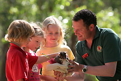 Cleland Wildlife Park - Tourism Brisbane