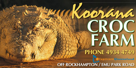 Koorana Saltwater Crocodile Farm - Tourism Brisbane