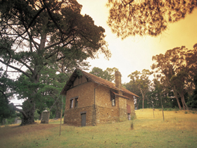 Heysen - The Cedars - Tourism Brisbane