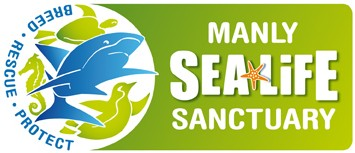 Manly SEA LIFE Sanctuary - Tourism Brisbane