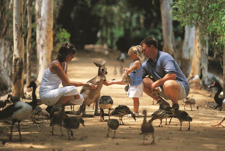 Billabong Sanctuary - Tourism Brisbane