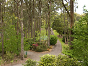 Mount Lofty Botanic Garden - Tourism Brisbane