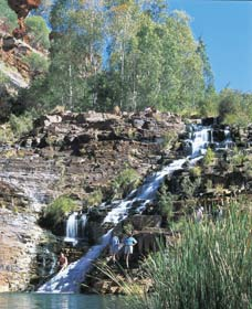 Fortescue Falls - Tourism Brisbane