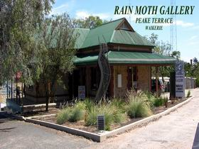 Rain Moth Gallery - Tourism Brisbane