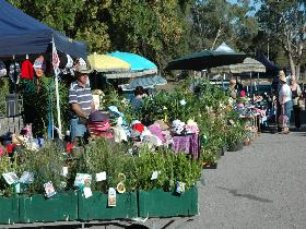 Meadows Monthly Market