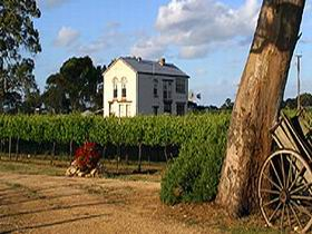 Highbank Vineyards - Tourism Brisbane