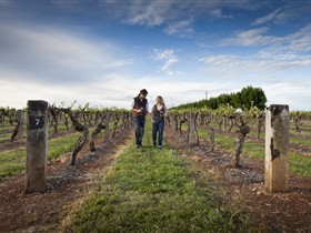 Coonawarra Wineries Walking Trail - Tourism Brisbane