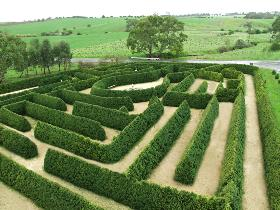 Mintaro Maze and Gift Shop - Tourism Brisbane