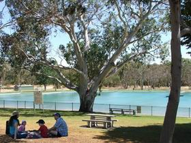 Naracoorte Nature Park and Swimming Lake - Tourism Brisbane