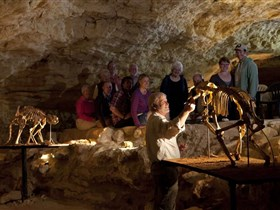Naracoorte Caves National Park - Tourism Brisbane