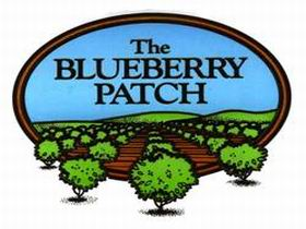 The Blueberry Patch - Tourism Brisbane