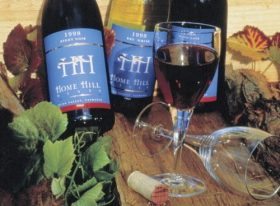 Home Hill Vineyard and Winery Restaurant - Tourism Brisbane
