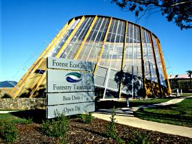 Forest EcoCentre - Tourism Brisbane