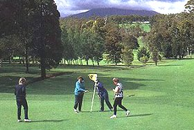 Deloraine Golf Course - Tourism Brisbane