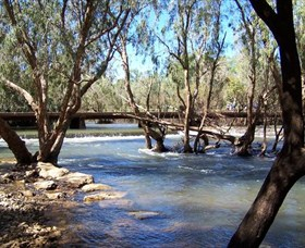 Low Level Nature Reserve - Tourism Brisbane