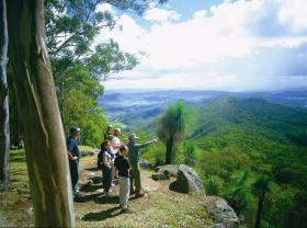 Gold Coast Hinterland Great Walk - Tourism Brisbane