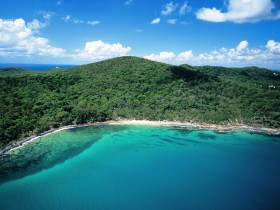 Noosa Heads Coastal Track - Tourism Brisbane