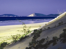 Cooloola Great Sandy National Park - Tourism Brisbane