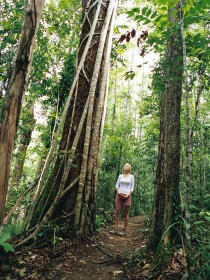 Wet Tropics - Tourism Brisbane