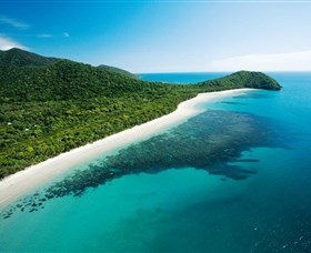 Cape Tribulation Daintree National Park - Tourism Brisbane