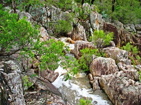 Crows Nest National Park - Tourism Brisbane