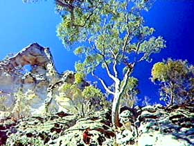 Mount Moffatt Section - Carnarvon National Park - Tourism Brisbane