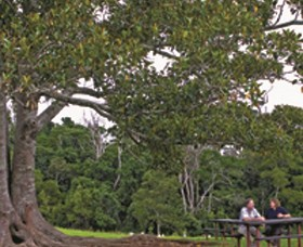 Ravensbourne National Park - Tourism Brisbane