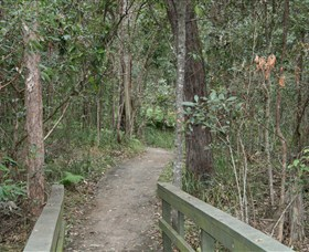 Springwood Conservation Park - Tourism Brisbane