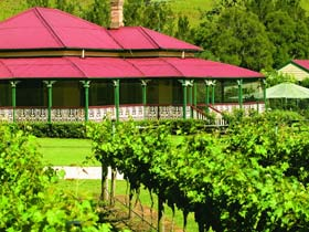 OReillys Canungra Valley Vineyards - Tourism Brisbane