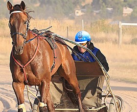 Ballarat  District Trotting Club - Tourism Brisbane